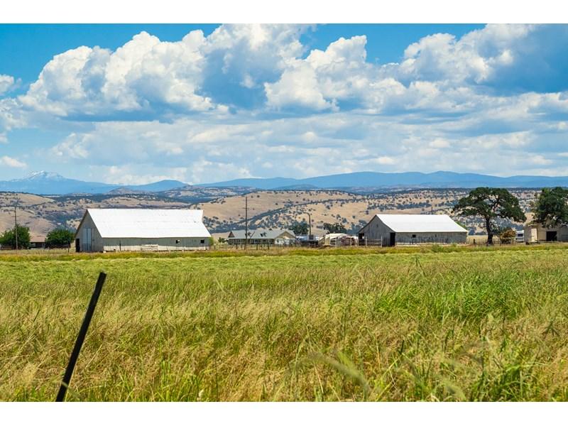 Los Molinos Ranch _ Photography-9