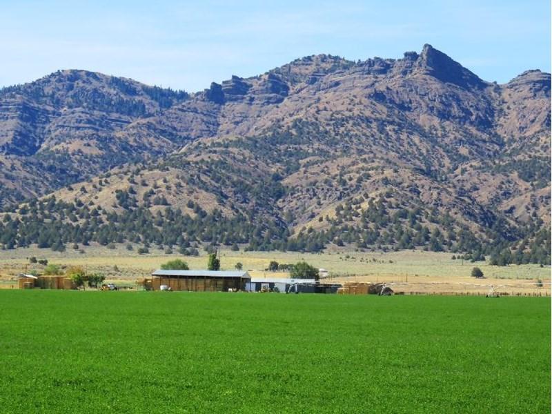 Agmatt Cedarville Ranch